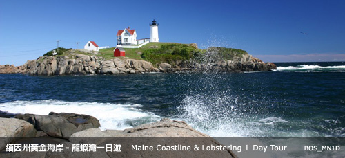 Maine Coastline & Lobstering 1 Day